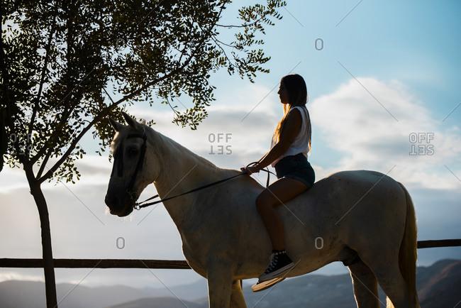 Young woman sitting on horseback