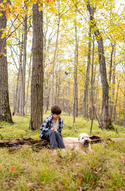 Young boy playing in the woods with his dog on an autumn day.