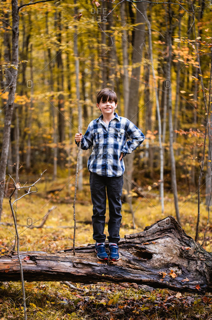 Young boy standing on a fallen tree in the woods on an autumn day.