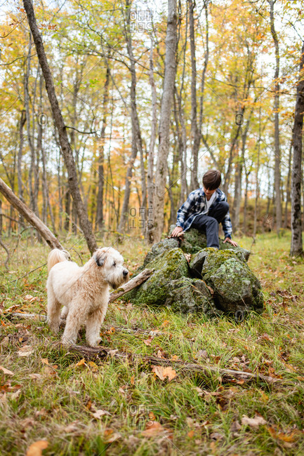 Young boy climbing on a rock in the woods with his dog on a fall day.