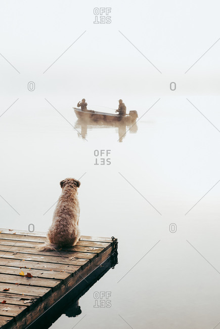 Two people in fishing boat in the fog with dog watching from the dock.