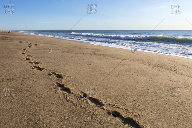 Footprints in the sand on pristine Whitecrest Beach on Cape Cod