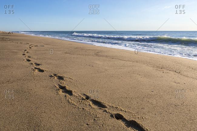 Footprints in the sand on pristine Whitecrest Beach on Cape Cod