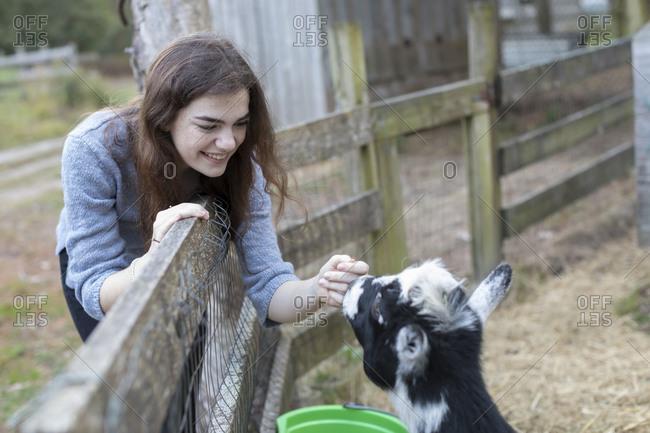 Pretty teenage girl smiling and petting goat in farm setting
