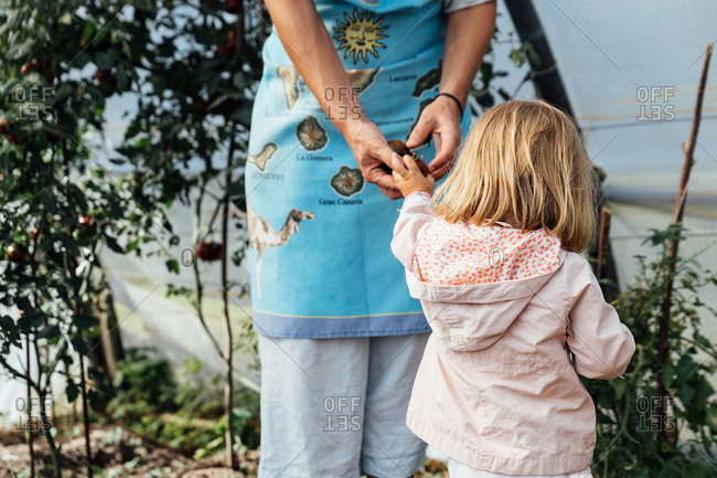 Mother holding the hand of her little daughter in a garden. affection concept