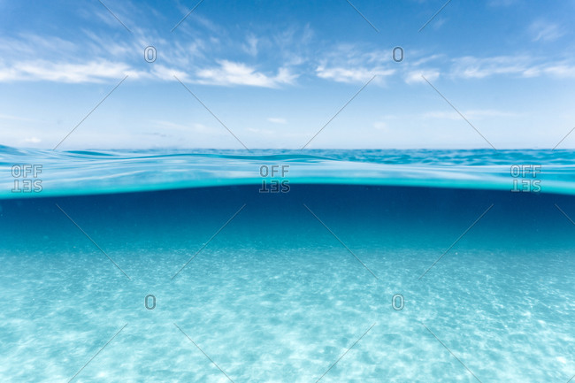 Over-under image of surface and clear water in hawaii