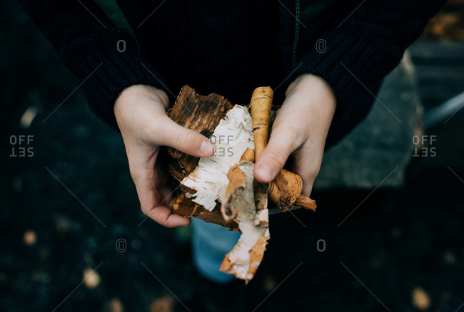 Child's hands holding wood to start a fire