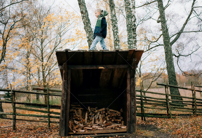 Boy stood on a wooden shed filled with wood in the forest
