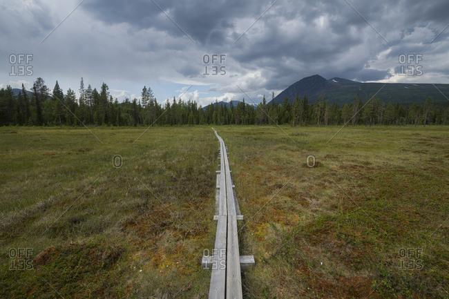Wooden plank across boggy meadow along Padjelantaleden Trail, Lapland, Sweden