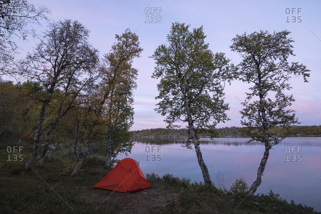 Kvikkjokk, Norrbotten County, Sweden - September 9, 2019: Tent wild camping at lake Tjeggelvas on middle section of Kungsleden Trail, Lapland, Sweden