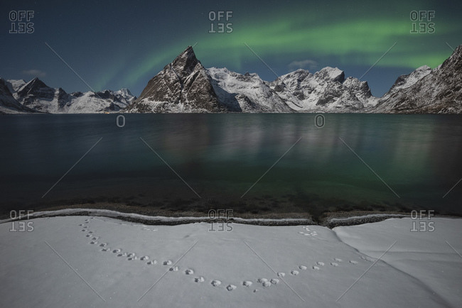 Northern lights shine in sky over Olstind mountain peak, Moskenesoy, Lofoten Islands, Norway