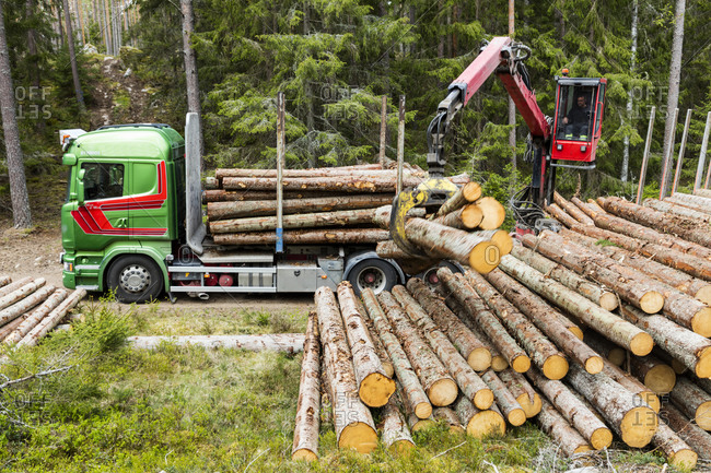 Logs loading on lorry from the Offset collection