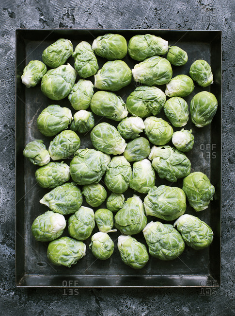 Down shot of brussels sprouts on metal tray