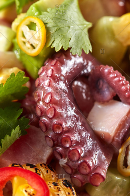 Seafood background with octopus and organic vegetables.