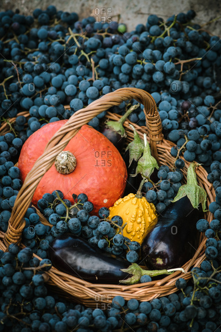 Eggplants, squash and pumpkin in a basket surrounded by grapes