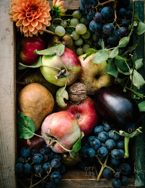 Overhead view of fruits and veggies in a wooden box