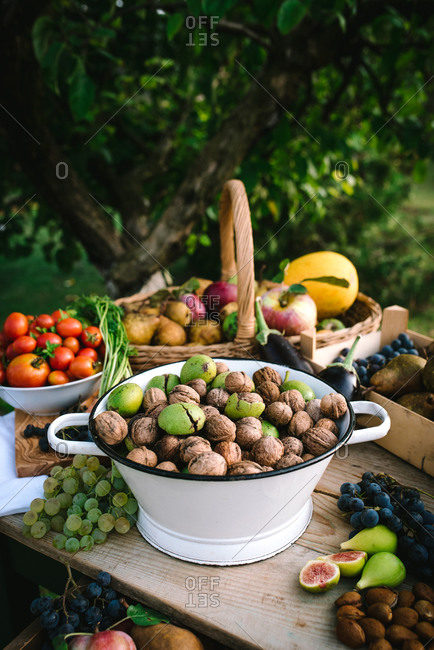 Large bowl filled with freshly harvested walnuts among other fruit and vegetables on a garden table