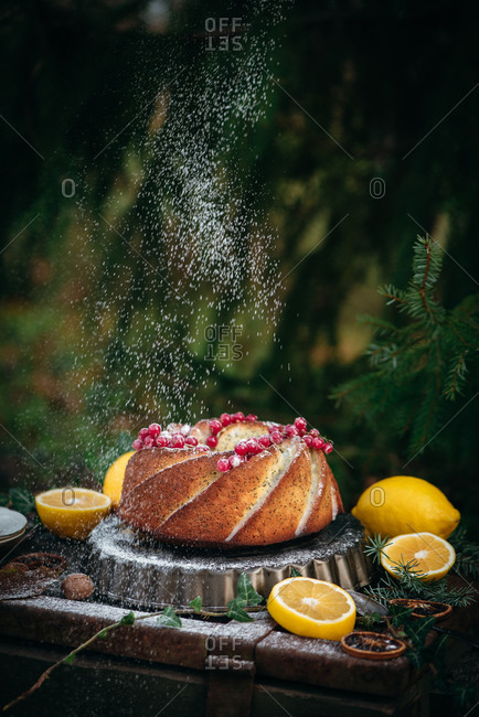 Powdered sugar being dusted over a Bundt cake topped with currants