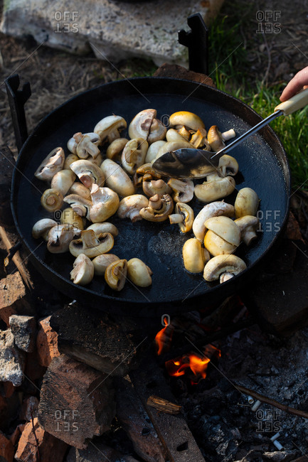Cooking mushrooms on open fire outdoor