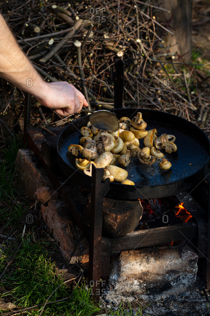 Preparing mushrooms in frying pan on a fire outdoors