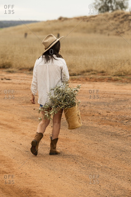 Rear view of a brunette woman walking in a field with a basket filled with leafy plants