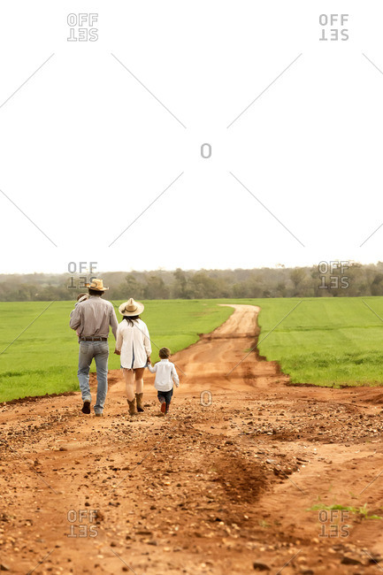 Rear view of a young family walking hand in hand on a dirt path