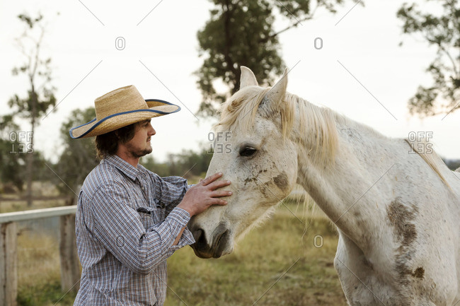 Farmer petting a white horse on a ranch
