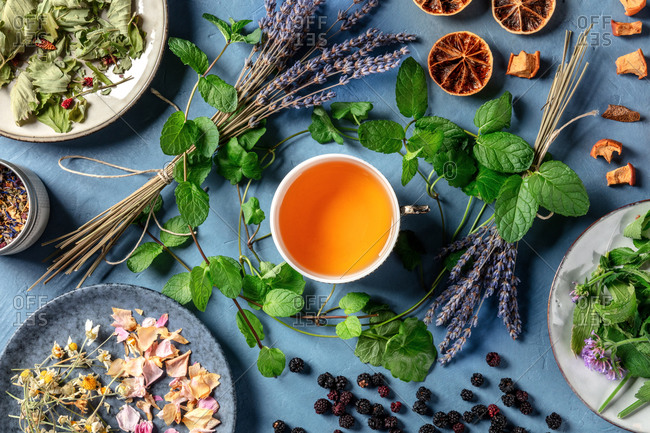 Herbal tea, natural, organic, and healthy, with an assortment of ingredients, with a tea cup, shot from the top on a blue background