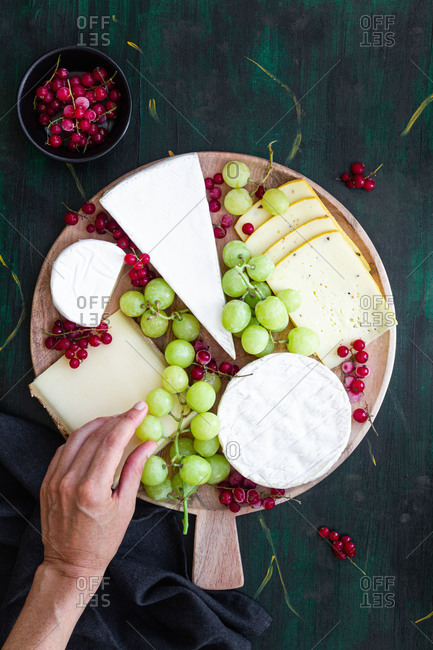 Top view composition of crop anonymous chef decorating delicious cheese platter with sweet grapes and red currants on wooden plate before serving on banquet