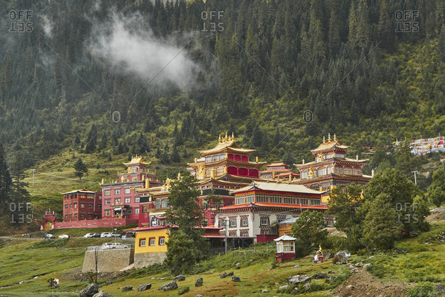 Picturesque valley with colorful buildings of Buddhist temples located near mountains covered with dense green woodland in China