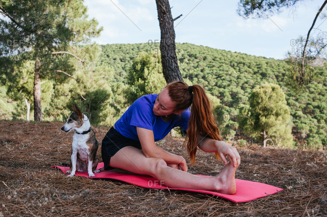 Side view of flexible female sitting on mat in Janu Sirsasana with dog and practicing yoga on hill in forest
