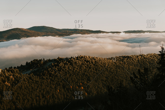 Low lying clouds over dense autumn forest covering rolling hills