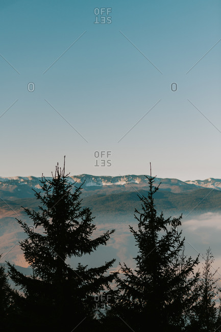 Light fog covering mountain landscape with silhouette of trees in foreground