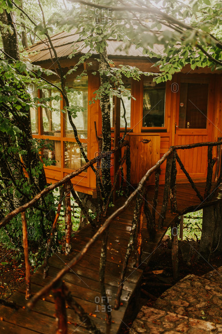 Wooden treehouse nestled in the forest on a rainy day