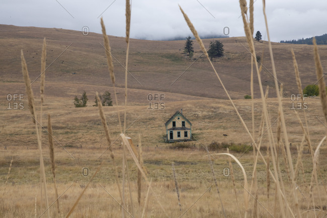 An abandoned farmhouse in the interior grasslands of British Columbia