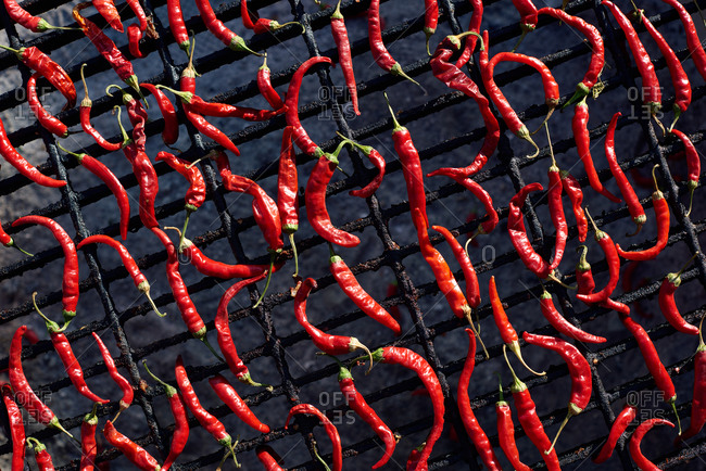 Drying cayenne chile peppers on an outdoor grill in the sun
