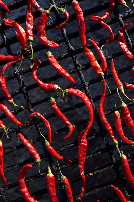 Close up of drying cayenne chile peppers on an outdoor grill in the sun