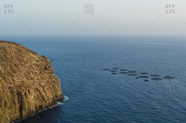 Aerial view of fish farming pods of the coast of Palm-Mar, Tenerife, Canary islands, Spain.