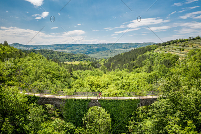 Aerial view of Freski Bridge & Tunnel surrounded by trees in Antonci, Croatia, Croatia