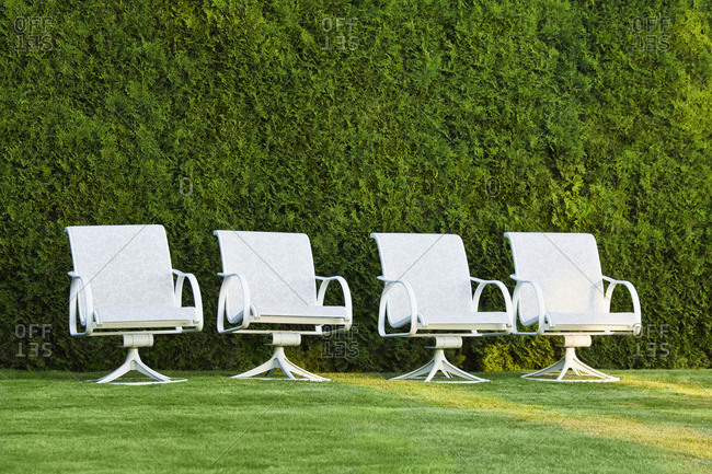 Swivel chairs in front of a hedge on grass.