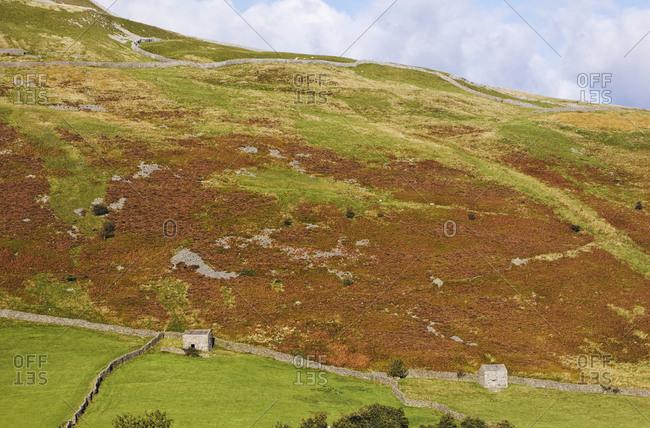 Stone huts in heathery rural landscape.