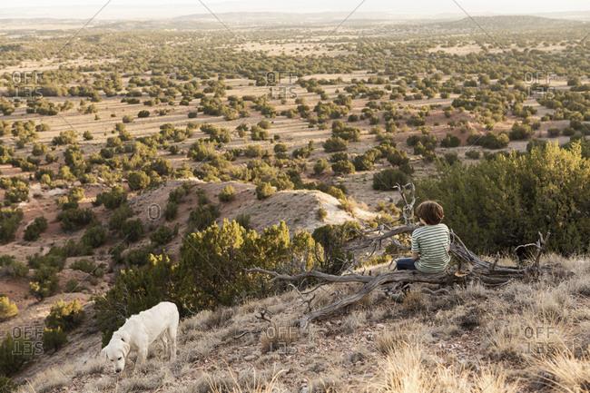Young boy sitting on fallen tree, Galisteo Basin