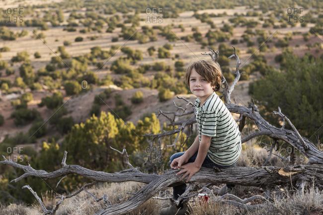 Young boy sitting on fallen tree, looking back, Galisteo Basin