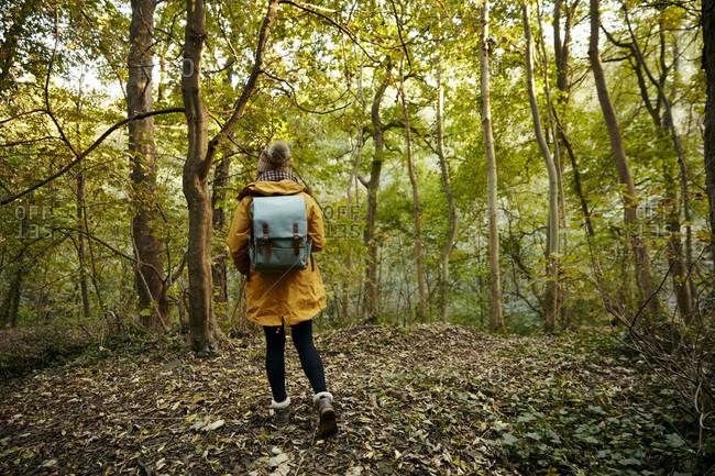 Woman walking through autumn woodland