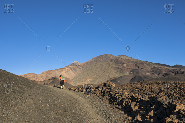 Hike in the volcanic landscape around the Montana de la Botija with a view of the volcanoes Pico del Teide, Pico Viejo , El Teide National Park, UNESCO World Heritage, Tenerife, Canary Islands, Spain