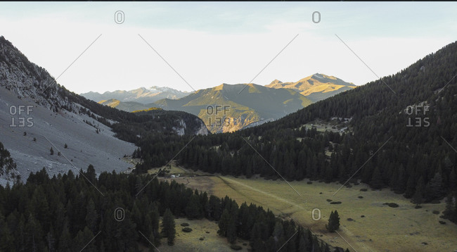 Aerial view of a mountain forest