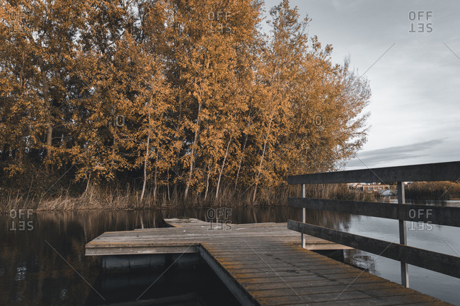 Jetty on a lake in the forest during the fall time