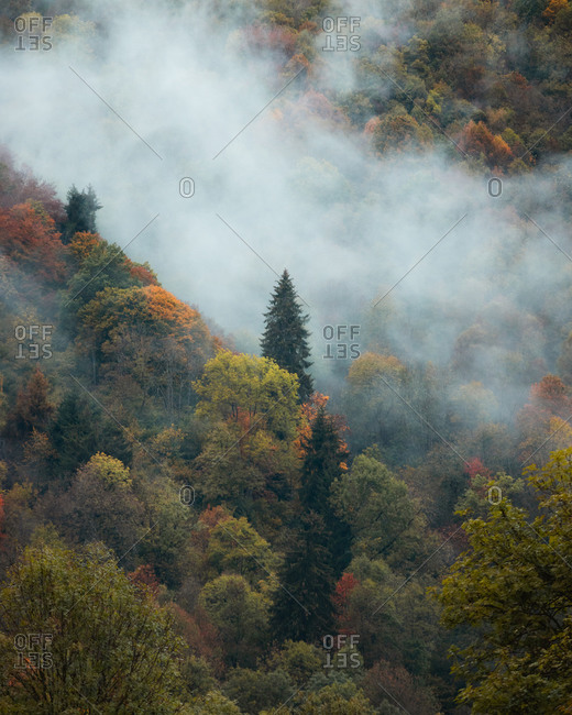 Moody clouds rolling through the trees in Hautes Pyrenees