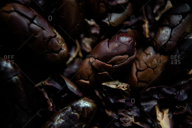 Macro shot of roasted cocoa beans showing different colors of roasts and textures lit by dramatic lighting