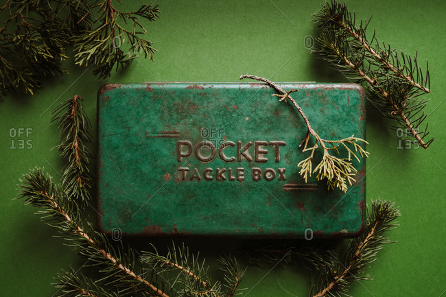 Overhead view of a rusty green tacklebox on green background with pine branches